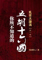 乱世大漩涡——你所不知道的五胡十六国(第一卷)