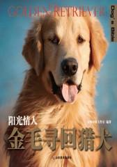 阳光情人——金毛寻回猎犬(仅适用PC阅读)