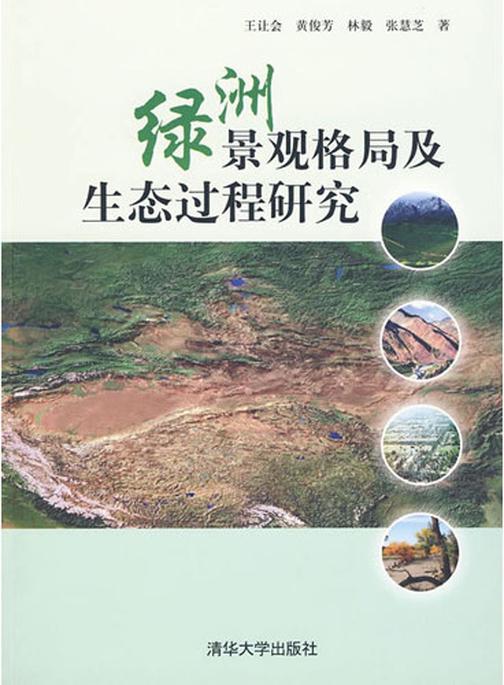 绿洲景观格局及生态过程研究(仅适用PC阅读)