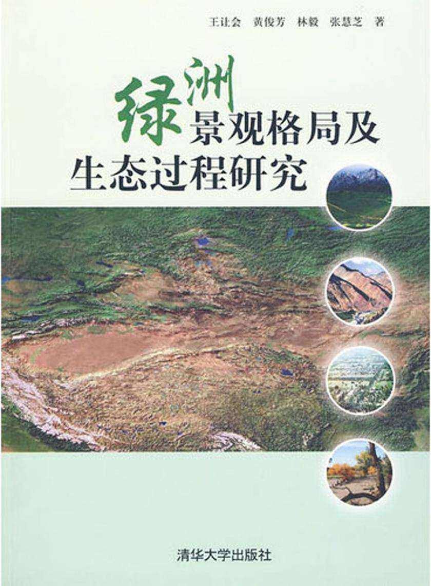 绿洲景观格局及生态过程研究