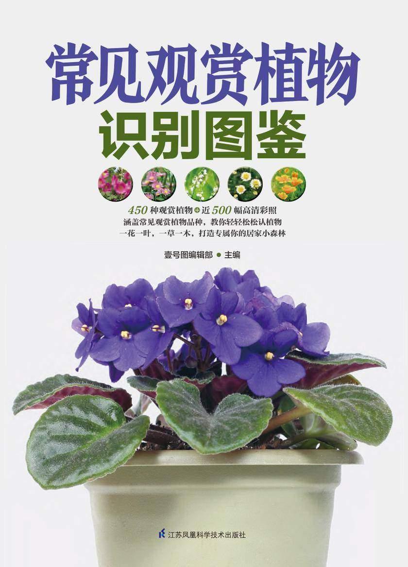 常见观赏植物识别图鉴
