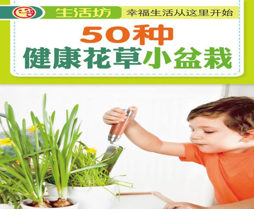 50种健康花草小盆栽