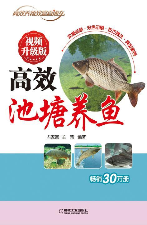 *池塘养鱼 视频升级版