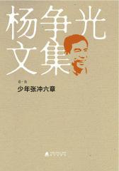 杨争光文集少年张冲六章