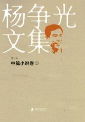 杨争光文集中篇小说2