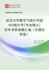 武汉大学数学与统计学院432统计学[专业硕士]历年考研真题汇编(含部分答案)