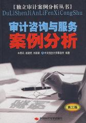 审计咨询与服务案例分析(第三版)(试读本)