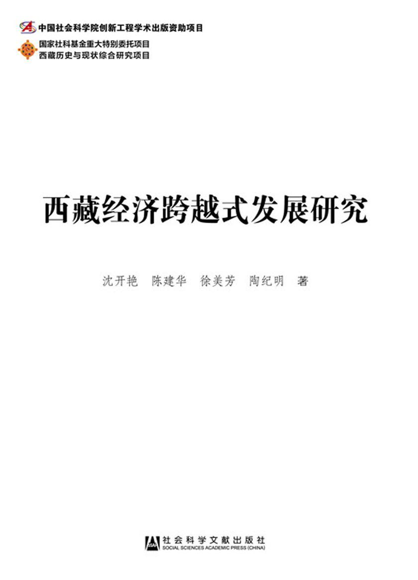 西藏经济跨越式发展研究