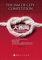 大困局——中国城市危与机(试读本)