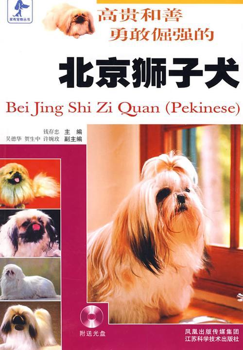 高贵和善勇敢倔强的北京狮子犬