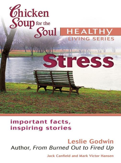 Chicken Soup for the Soul Healthy Living Series: Stress