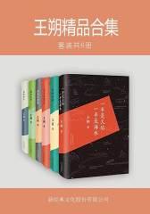王朔精品合集(套装共6册)