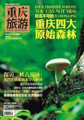 重庆旅游 月刊 2011年8月(电子杂志)(仅适用PC阅读)