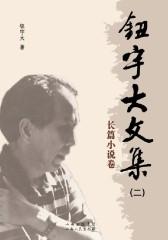 钮宇大文集(二):长篇小说卷