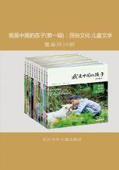 我是中国的孩子(第一辑):民俗文化·儿童文学(套装共10册)
