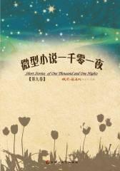 微型小说一千零一夜·第九卷