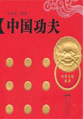 中国功夫(仅适用PC阅读)