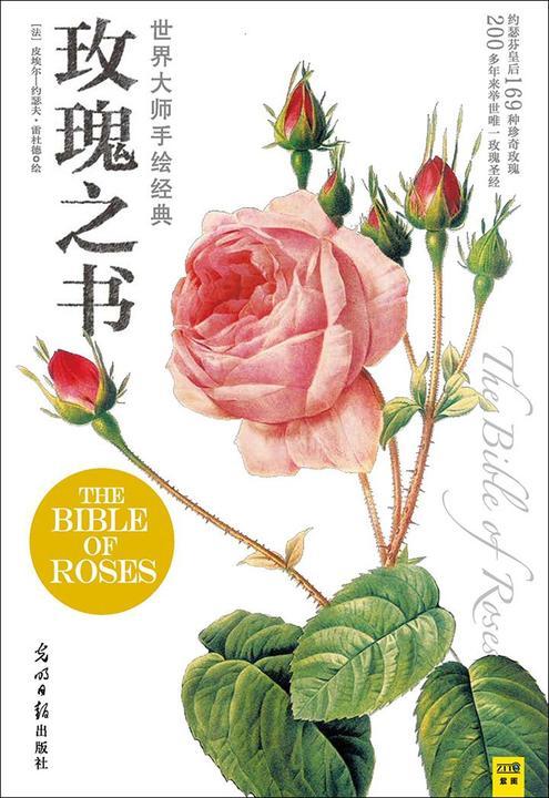 世界大师手绘经典玫瑰之书
