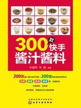 300款快手酱汁酱料