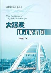 大跨度拱式桥抗风(仅适用PC阅读)