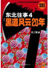 东北往事4:黑道风云20年(亲历者讲述中国 真实黑道故事)(试读本)