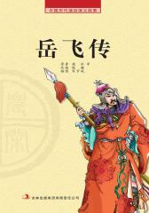 中国历代通俗演义故事:农闲读本-岳飞传