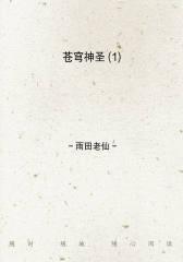 苍穹神圣(1)