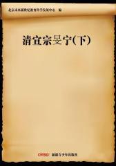 清宣宗旻宁(下)