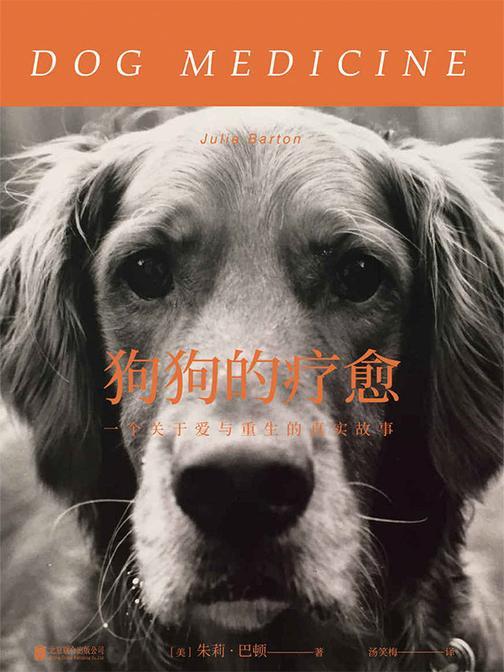 狗狗的疗愈