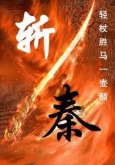 斩秦 (2)