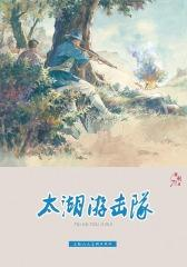 连环画专辑:胜利日·太湖游击队