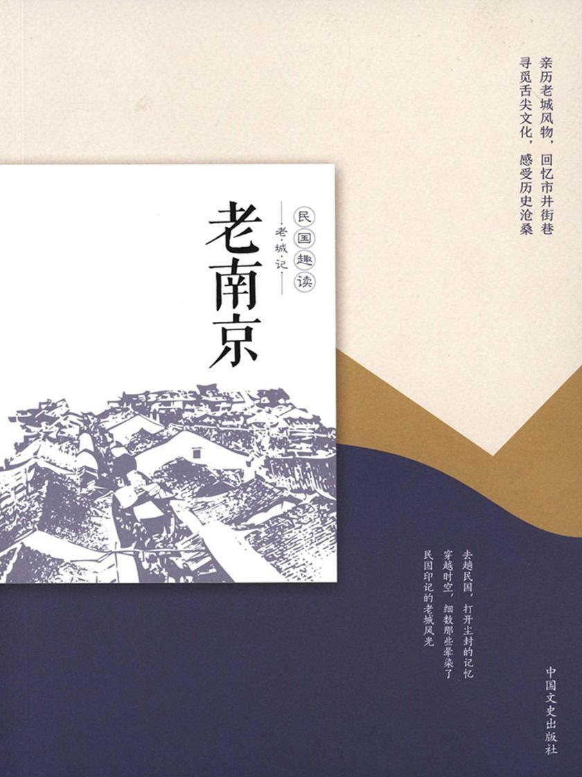 老南京(民国趣读·老城记)
