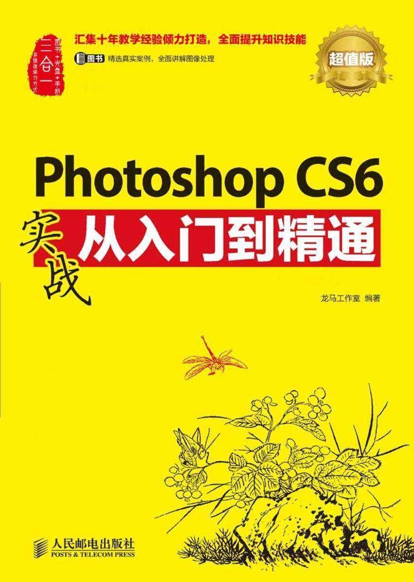 Photoshop CS6实战从入门到精通(超值版)(不提供光盘内容)
