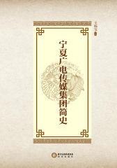 宁夏广电传媒集团简史