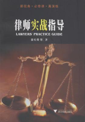 律师实战指导