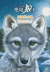 绝境狼王系列1:孤独的小狼