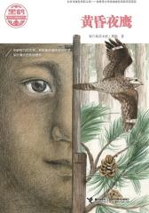 黑鹤动物文学精品系列:黄昏夜鹰