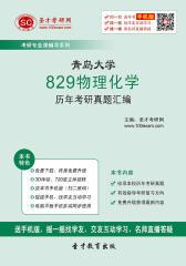青岛大学829物理化学历年考研真题汇编