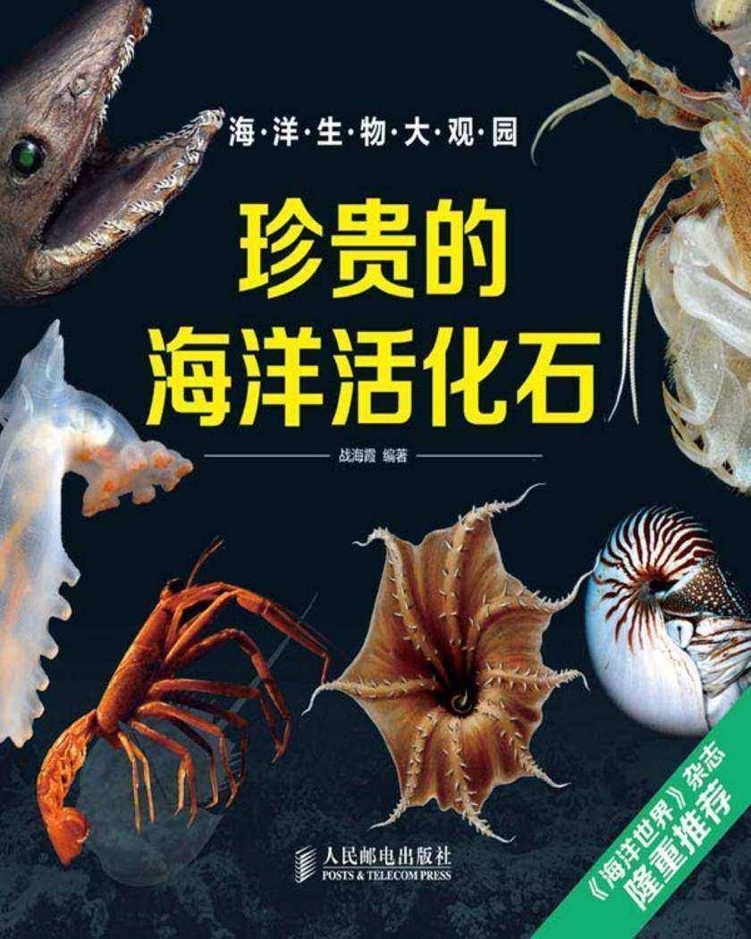 珍贵的海洋活化石