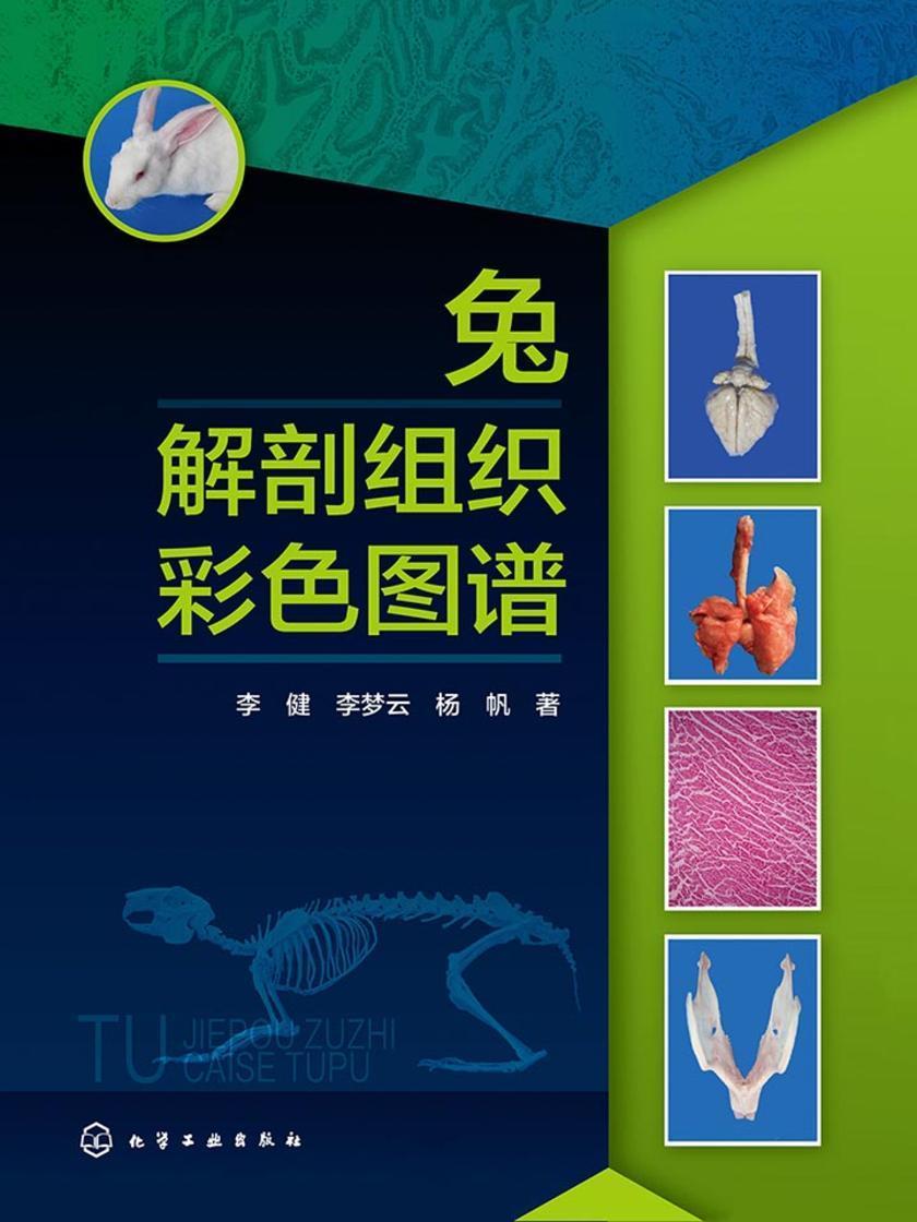 兔解剖组织彩色图谱