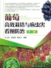 葡萄高效栽培与病虫害看图防治 第二版