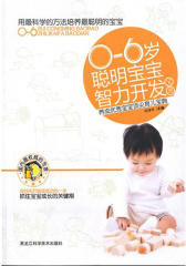 0-6岁聪明宝宝智力开发宝典