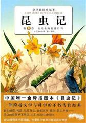昆虫记·卷6