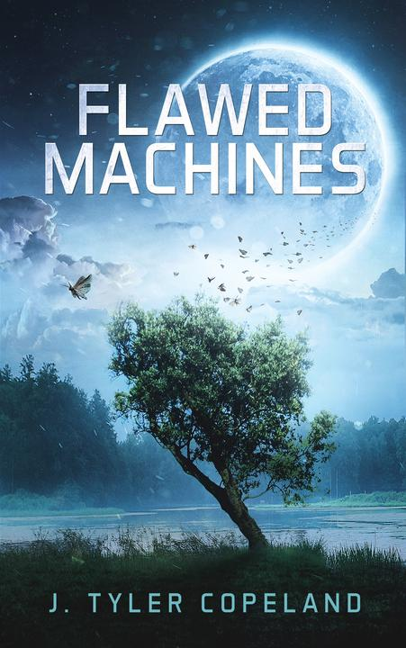 Flawed Machines
