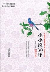 小小说30年(精华本)