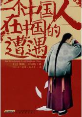 一个中国人在中国的遭遇(试读本)