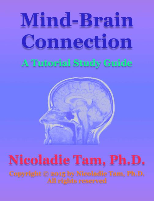 Mind-Brain Connection: A Tutorial Study Guide
