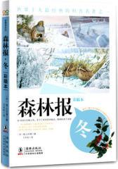 森林报冬(试读本)