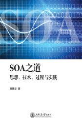 SOA之道:思想、技术、过程与实践