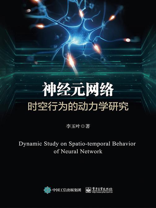 神经元网络时空行为的动力学研究